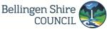 BSC-Logo - WEB
